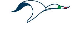 logo-sudcantieri-per-web-02 (1)-01